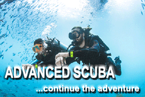 Advanced Scuba